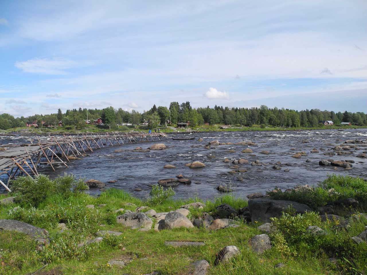 The Tornio River serves as the border of Finland and Sweden. It is managed by a binational commission, and it's not too warm for the spawning salmon.