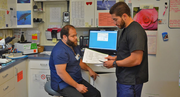 Lab assistants Bobby Escobar and Marcos Cervantes work in the Westside Neighborhood Clinic's small laboratory. The room is plastered in dolphin pictures and even a statue, since one of the staff members thinks it makes it more inviting for patients. (Lara Cooper / Noozhawk photo)