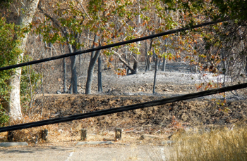 Fire damage can be seen through downed power lines across the invisible Santa Ynez riverbed.