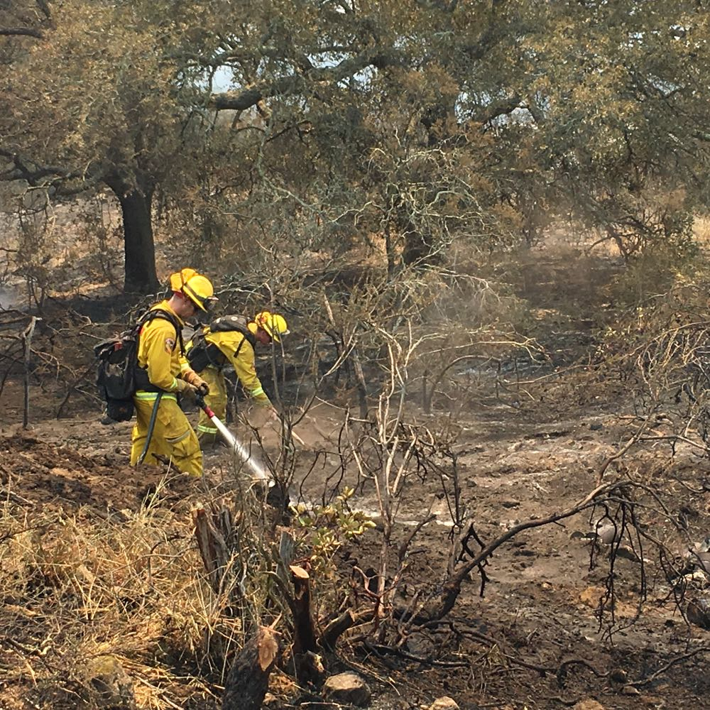 Firefighters tend to spot fires and sparks while crews conduct back-burning operations to clear vegetation ahead of the Sherpa Fire, currently burning toward Las Llagas Canyon, about six miles west of Goleta.