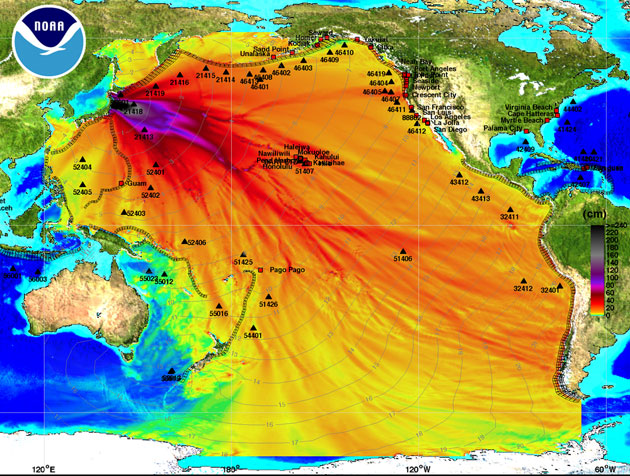 The March 11 tsunami's maximum wave amplitude, computed by the NOAA Center for Tsunami Research.