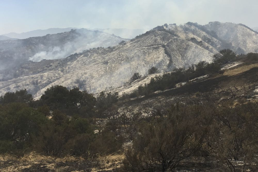 At midday June 18, the 4-day-old Sherpa Fire had burned more than 7,600 acres along the rugged Gaviota coast west of Goleta. Officials say the wildfire is 45 percent contained.