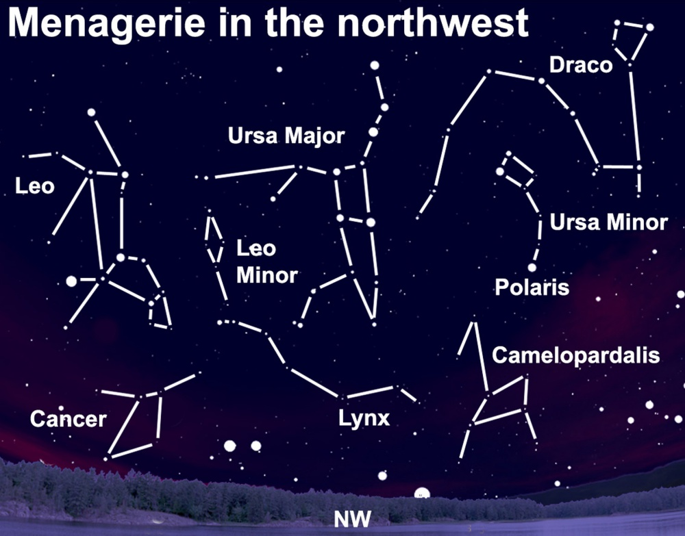 This week you should be able to see a heavenly host of constellations — after dark.