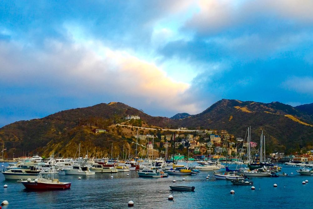 With a fleet of sailboats, yachts and other vessels lying at anchor, Catalina Island rises in the distance.