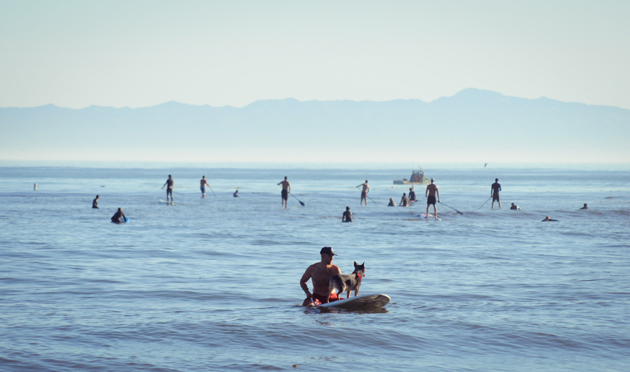 People and pets alike headed to Leadbetter Beach on Oct. 13 to enjoy the South Coast's unseasonably warm weather.