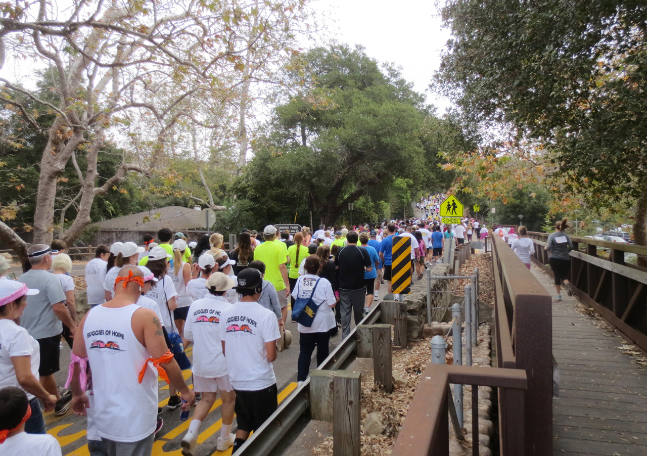 Hundreds of walkers and runners fill the streets in Montecito.