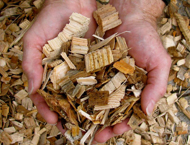 Scientists at CenSURF intend to develop strategies to convert cellulose and lignin from plants and wood into simpler chemicals as starting points for use by the chemical industry. (Oak Ridge National Laboratory photo / U.S. Department of Energy)