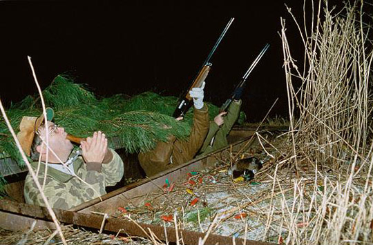 <p>Demo videos and online resources are available to help improve duck-calling techniques.</p>