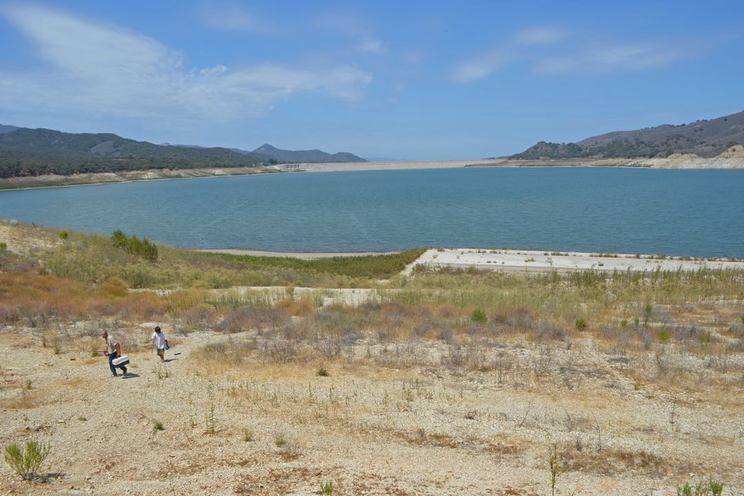 Lake Cachuma County Park is open to visitors despite the low water levels. This year's downstream releases from the Bradbury Dam, in the distance, will start Aug. 1.