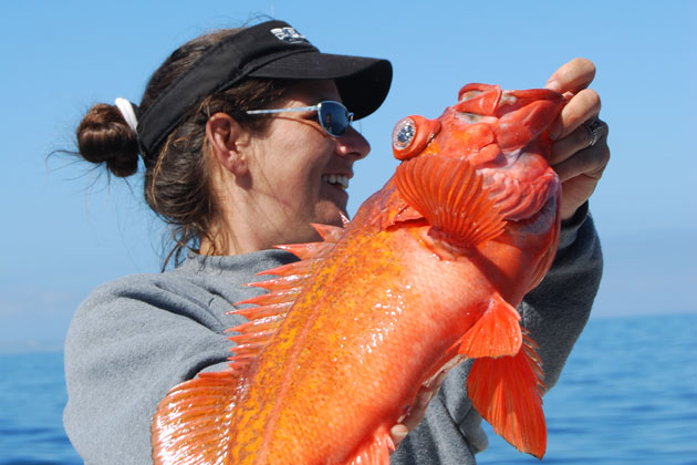 Capt. Tiffany Vague, aboard WaveWalker, displays a vermillion rockfish, or red snapper caught in the Santa Barbara Channel.