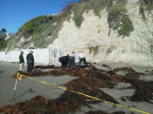 Investigators recover the body of David Propp, 21, which was found in November on an Isla Vista beach. (Beth Farnsworth / KEYT News photo)