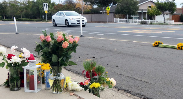 n the days after Shuguang Lui was struck and killed in a Goleta crosswalk, the scene of her death was marked by flowers, candles and other tributes. After a nearly four-month investigation, charges have been brought against the driver of the car that hit her and a toddler she was pushing in a stroller across Cathedral Oaks Road. (Gina Potthoff / Noozhawk file photo)