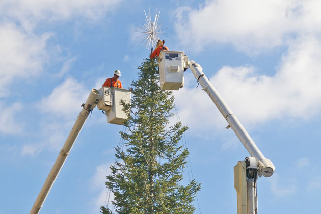 A new tree-topper is placed at the top of the 45-foot tree on State Street, installed for the holiday season.
