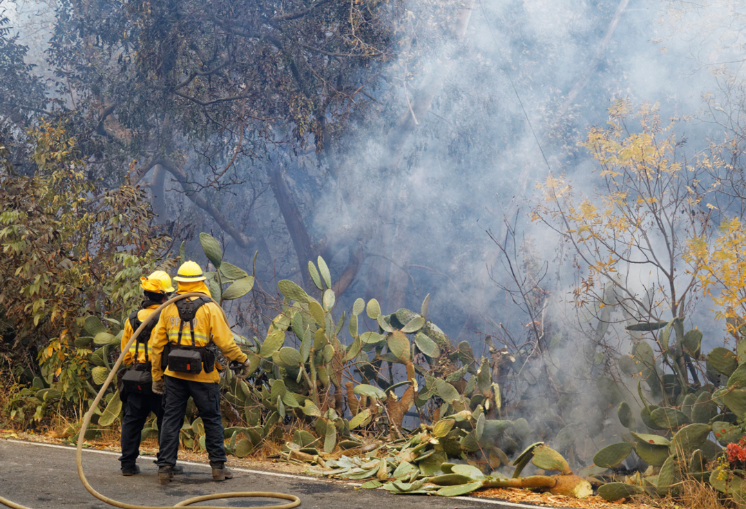 Santa Barbara County firefighters work on the Thomas Fire in the eastern Carpinteria Valley Sunday.
