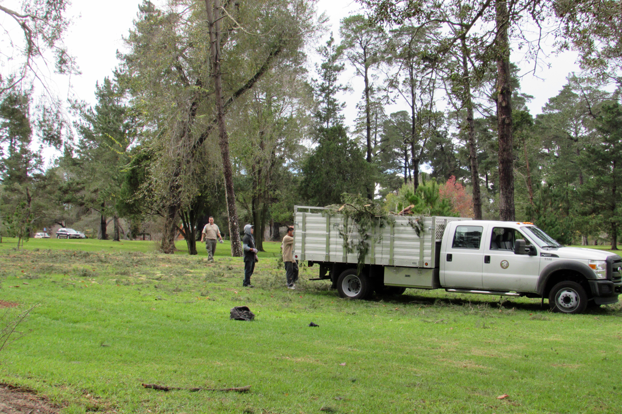 A Santa Barbara County crew fills a truck with debris that fell overnight in Waller Park due to the windy storm.
