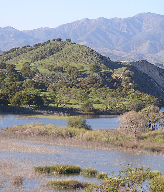 The fishing may be the immediate draw but you can't beat the view from the east end of Lake Cachuma.