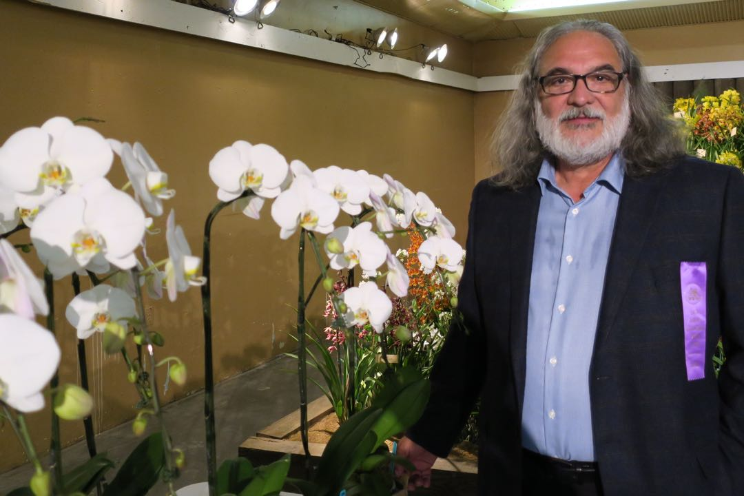 George Vasquez, president of Zuma Orchids in Malibu and creator of the Anne Smith Towbes Phalaenopsis Orchid.