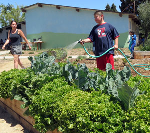 Watering, planting and weeding are just some of the tasks that Olga Reed School students enjoy doing in their campus garden, which was planted in December. (Gina Potthoff / Noozhawk photo)