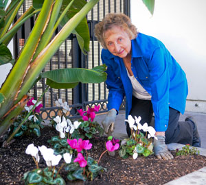 Thanks to the work of volunteer Reba Gonzales, freshly planted flowers are providing a dash of color. 'I know how to put things in the soil,' she says. 'I enjoy trying to make things look neat.' (Lara Cooper / Noozhawk photo)