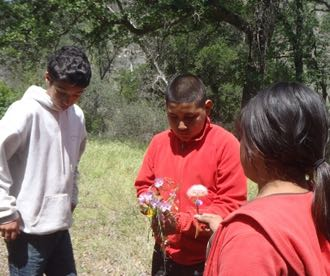 Wilderness Youth Project participants gather wildflowers during a recent outing in the Santa Barbara County backcountry. (Eric Isaacs photo / EMI Photography)