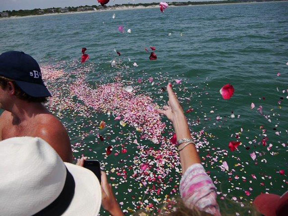 Rose Story Farm petals are tossed in the Atlantic Ocean as part of one family's celebration of life last summer.