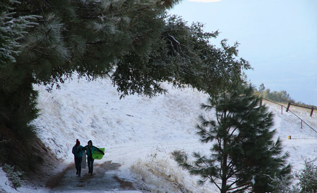 Taking advantage of a rare snow day, Santa Barbarans ventured into the Santa Ynez Mountains on Sunday with just about anything they could use as sleds, including boogie boards. (Tom Modugno photo / GoletaSurfing.com)