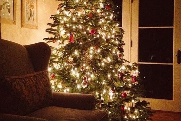 The scent of evergreen and the twinkle of lights on a Christmas tree make a home feel like the holidays.