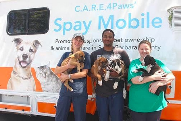 Among the veterinary services provided by C.A.R.E.4Paws are spaying, neutering, vaccinations and microchipping.