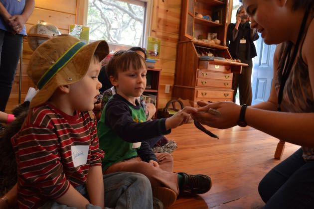Kids get the chance to touch a rosy boa at the Naturalist's Cabin at the Santa Barbara Museum of Natural History.