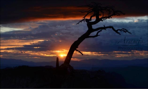 <p>Sunset from the West Rim in Zion National Park.</p>
