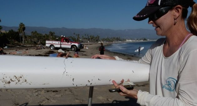 A shark sank its teeth into this outrigger canoe ama, but it apparently wasn't to its taste. (Dan Seibert photo)