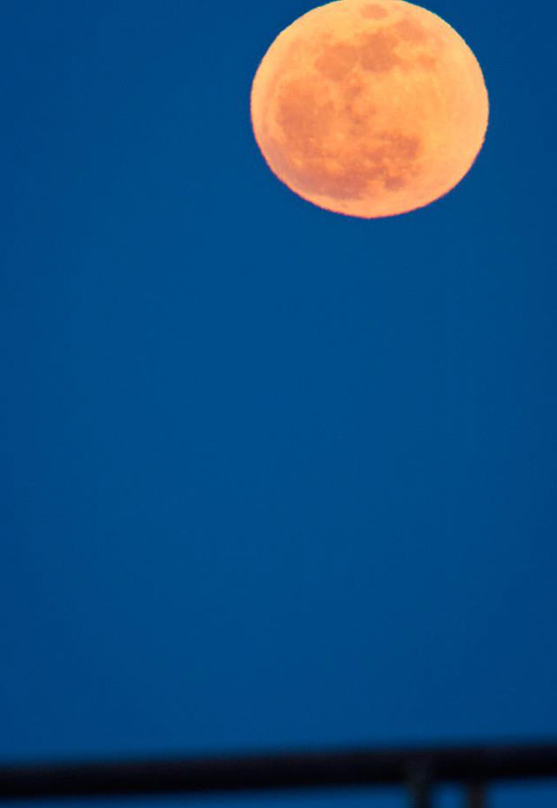 At 221,802 miles away, the super moon was at its closest point to Earth on Saturday night.