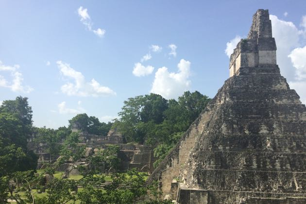 The Maya monuments and temples of Tikal were once protected by a canopy of jungle vegetation.