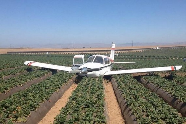 The pilot of a Piper Arrow suffered minor injuries when he crash-landed in an Orcutt strawberry field, but he and his passengers were able to walk away from the incident.