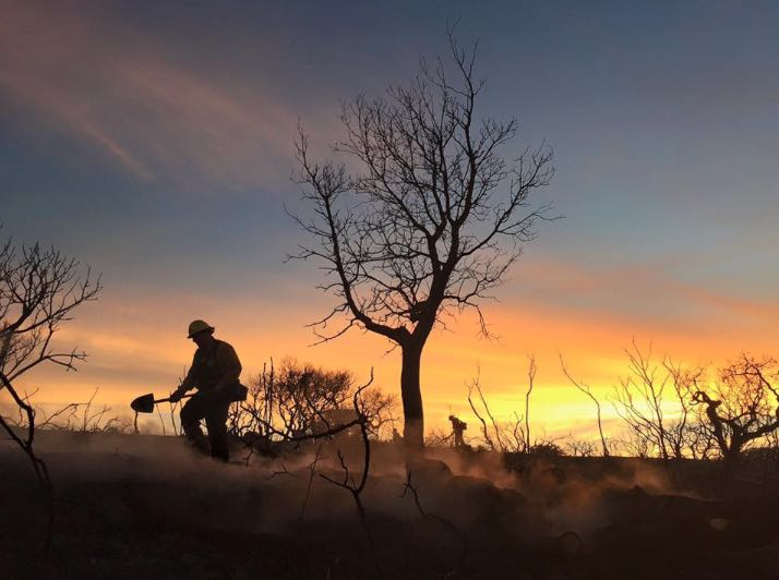 A firefighter is silhouetted in the smoky dusk June 29.