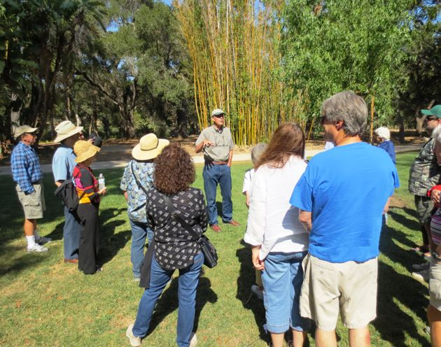 You can't properly celebrate an Arboretum Restoration Project and Santa Barbara Public Garden Month without a talk by an arborist. (Rochelle Rose / Noozhawk photo)