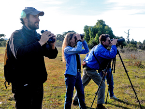 Birders, from left, Jeff Simeon, Teresa and Jerry Rounds, and Renee de Jong scope out birds flying through Lake Los Carneros Park in Goleta on Saturday as part of the annual Christmas Bird Count. (Lara Cooper / Noozhawk photo)