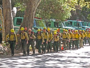 A U.S. Forest Service hand crew heads toward the fire lines Tuesday during the Cold Fire above Montecito. (Giana Magnoli / Noozhawk photo)