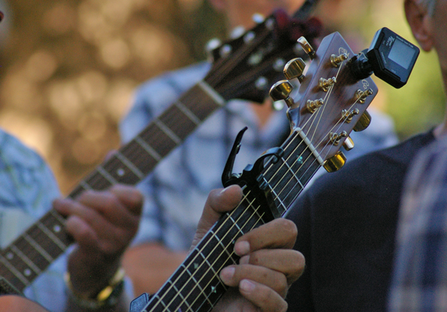 Finger picking was the order of the day Sunday at the Fiddlers' Convention.