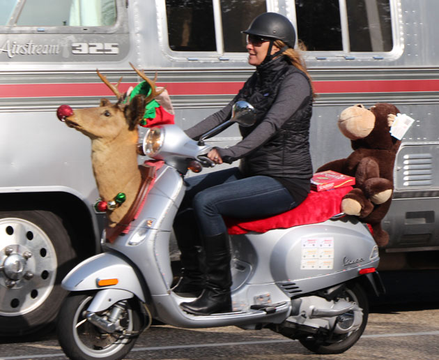 One scooter sported a literal 'deer in the headlight' look. (John Palminteri photo / www.keyt.com)