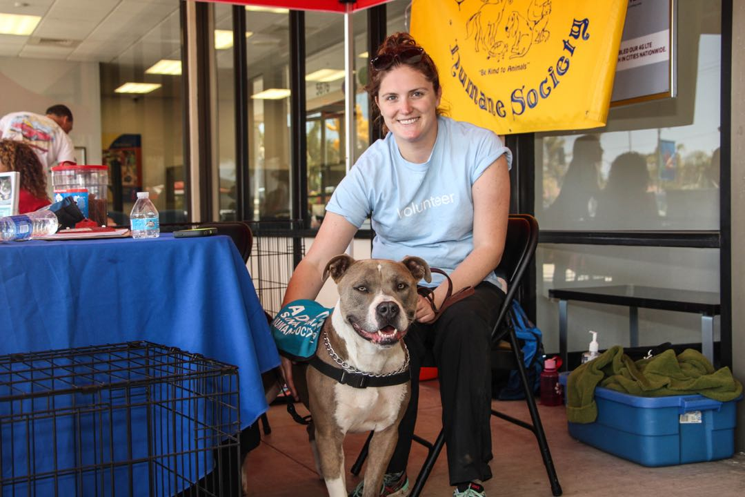 The Santa Barbara Humane Society was among the dozens of participating local nonprofit organizations that had booths and tables at the event.