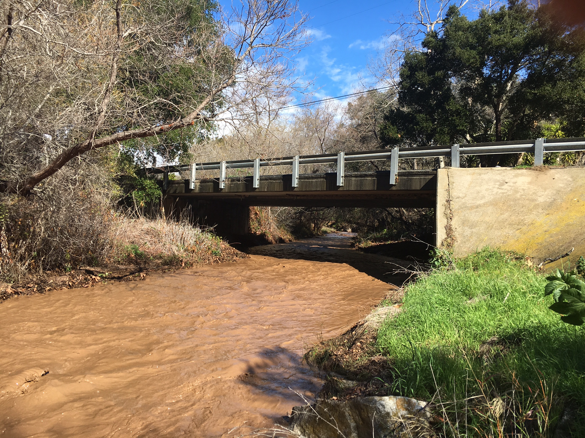 Tecolote Creek flows Sunday after rainstorms in western Goleta.
