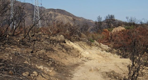 The Inspiration Point Trail in July 2009, two months after the Jesusita Fire scorched more than 8,000 acres in the Santa Barbara foothills. (Multiuse Trails Coalition photo)