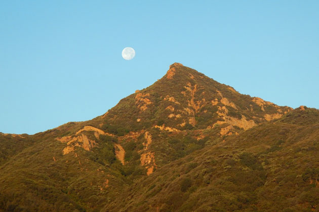 A moon rises over a backcountry peak. Two books raise questions about conservation efforts in the Anthropocene Age.
