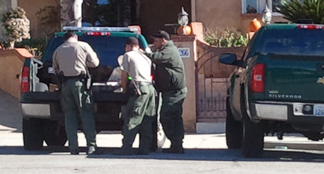 State Fish & Wildlife officers prepared to tranquilize a mountain lion that wandered into a residential neighborhood near the Santa Barbara Municipal Golf Course. (Giana Magnoli / Noozhawk photo)
