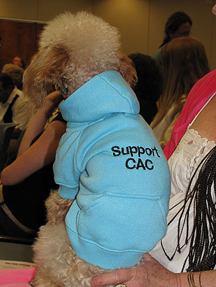 The Consumer Advocacy Coalition is a pet cause for this poodle.