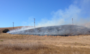 A fire near Highway 101 west of Refugio Canyon Monday afternoon charred 10 acres of grass before being contained, according to the Santa Barbara County Fire Department. (Brandon T. Davis / KEYT News photo)
