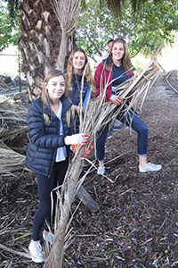 Ninth graders helped remove fallen palm fronds and tree stumps.