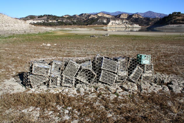 Artificial reefs created out of milk crates are far from the fish these days.