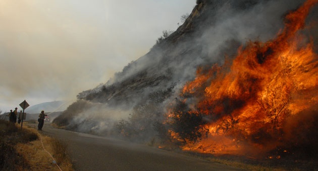 Flames from the 1,800-acre White Fire consume roadside vegetation Monday along Paradise Road in the upper Santa Ynez River area. (Ryan Cullom photo)